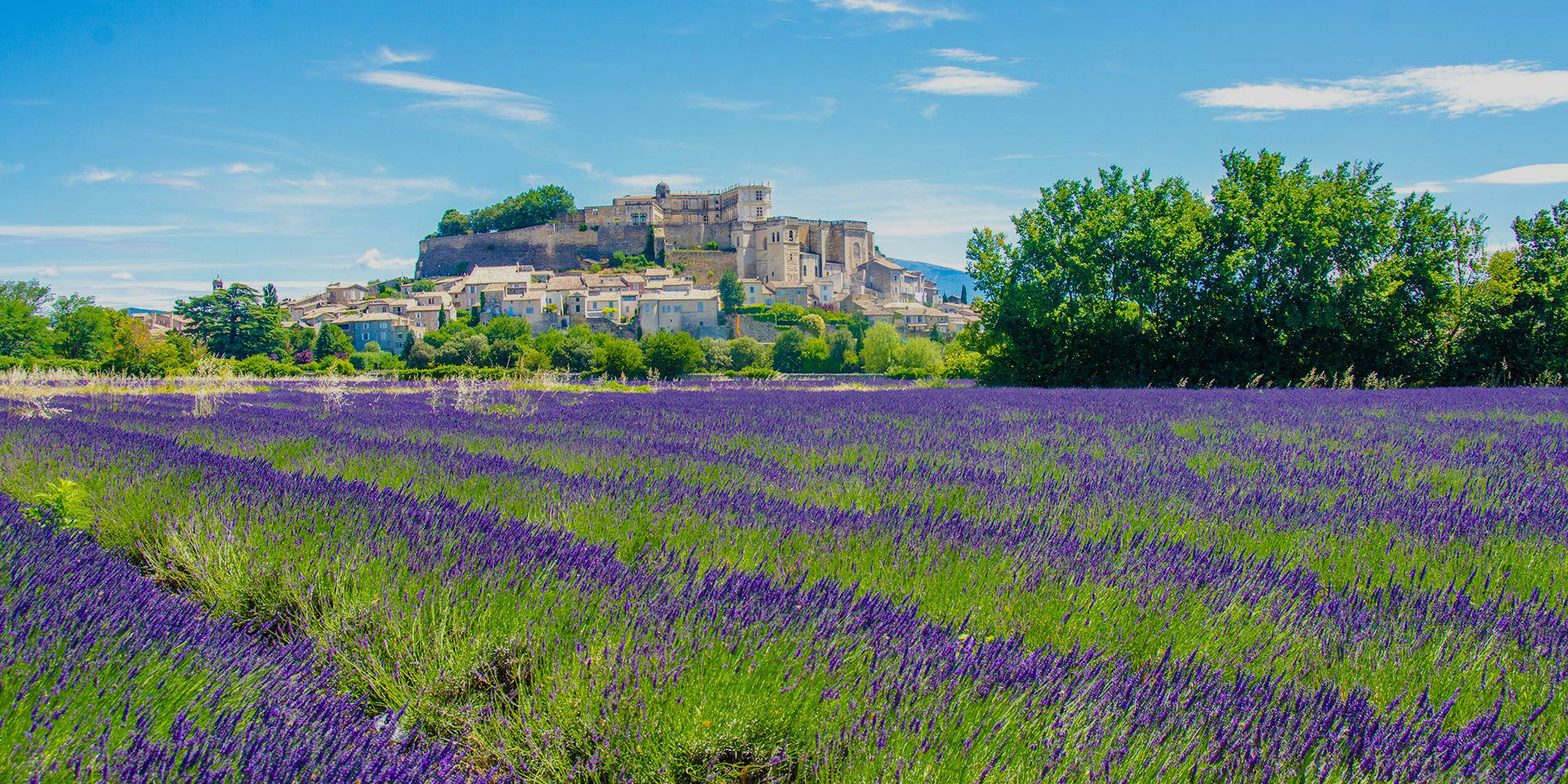 4 days in Provence