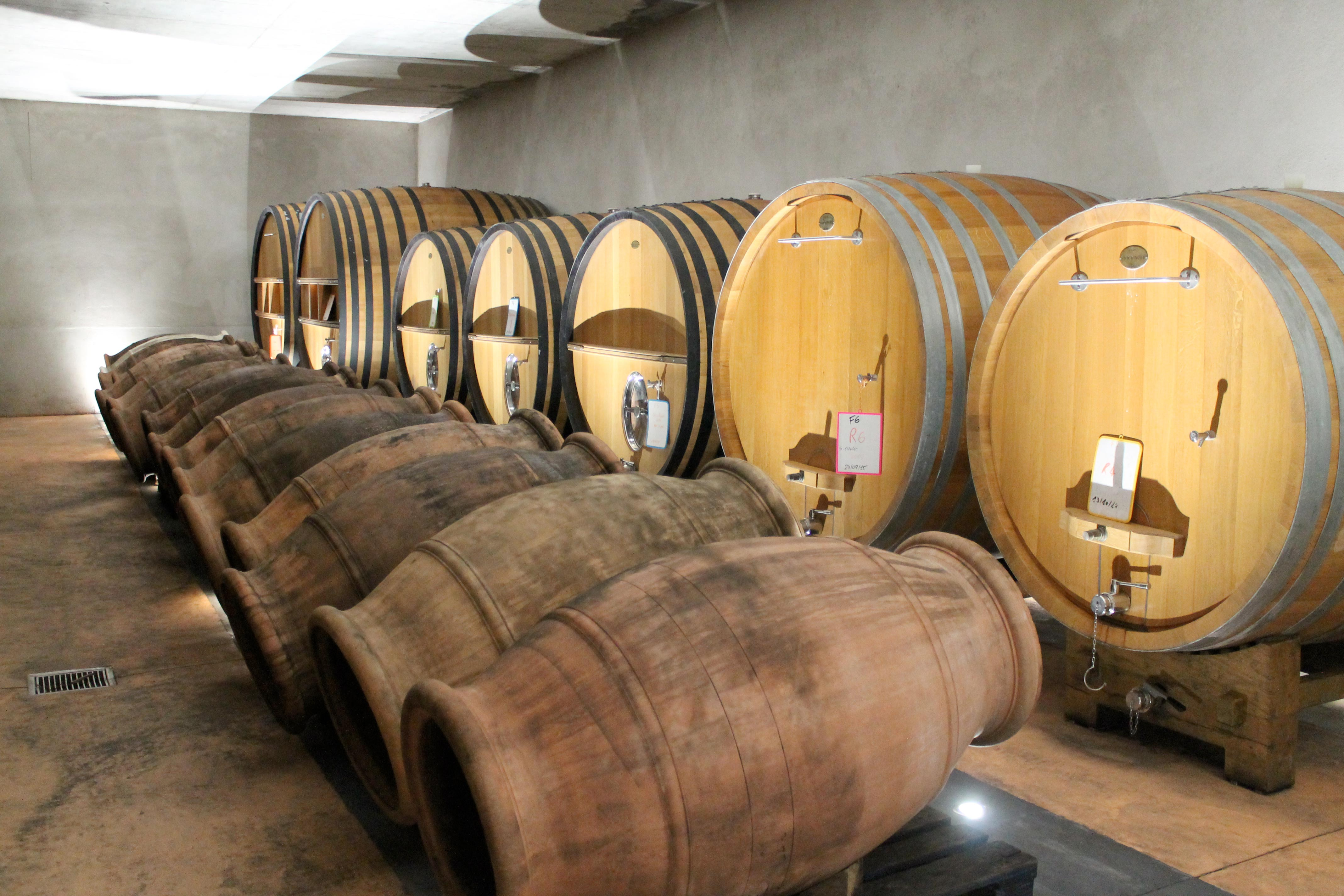 Corsica wine tour, old and new barrels