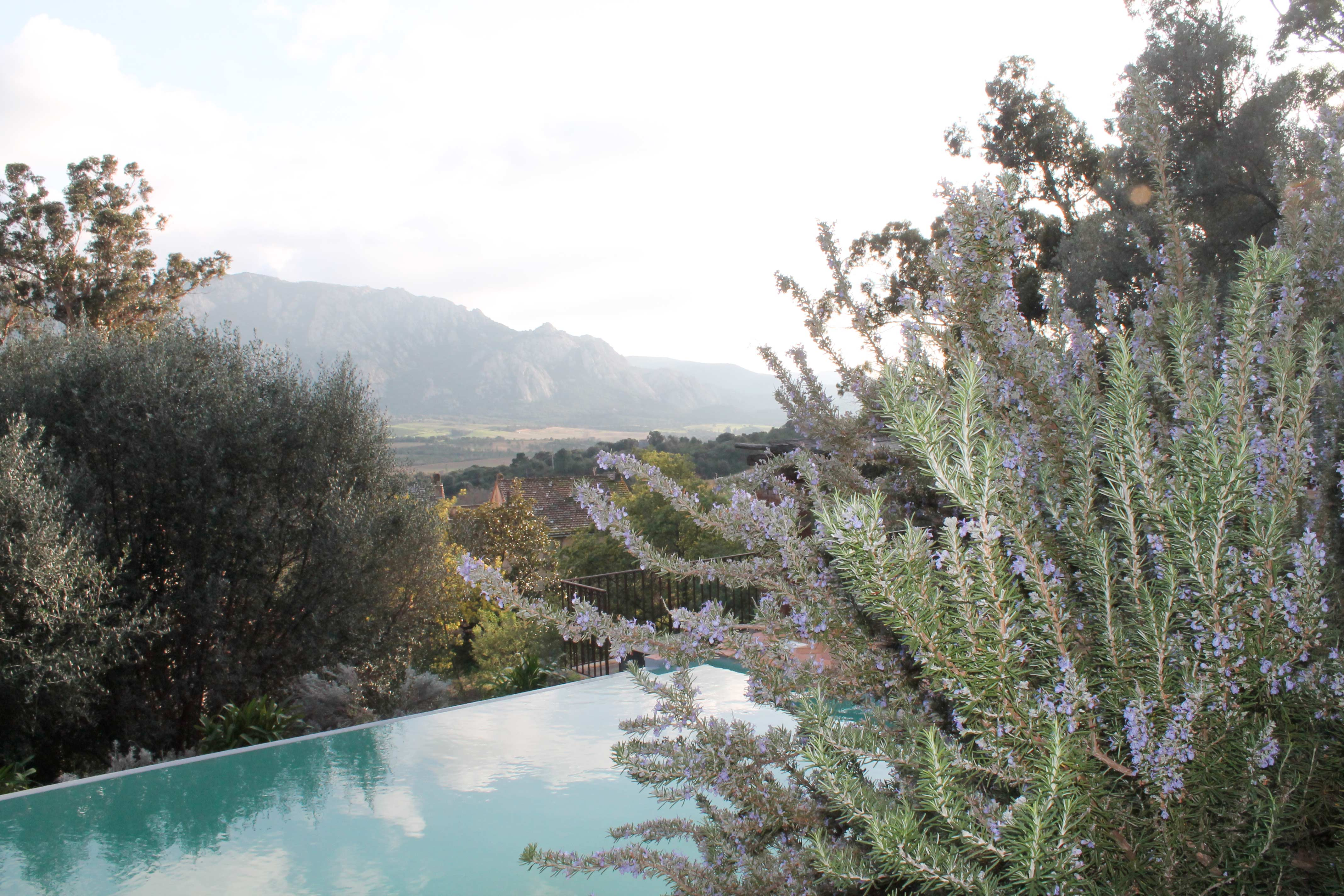 Corsica wine tour, infinity pool in a private house