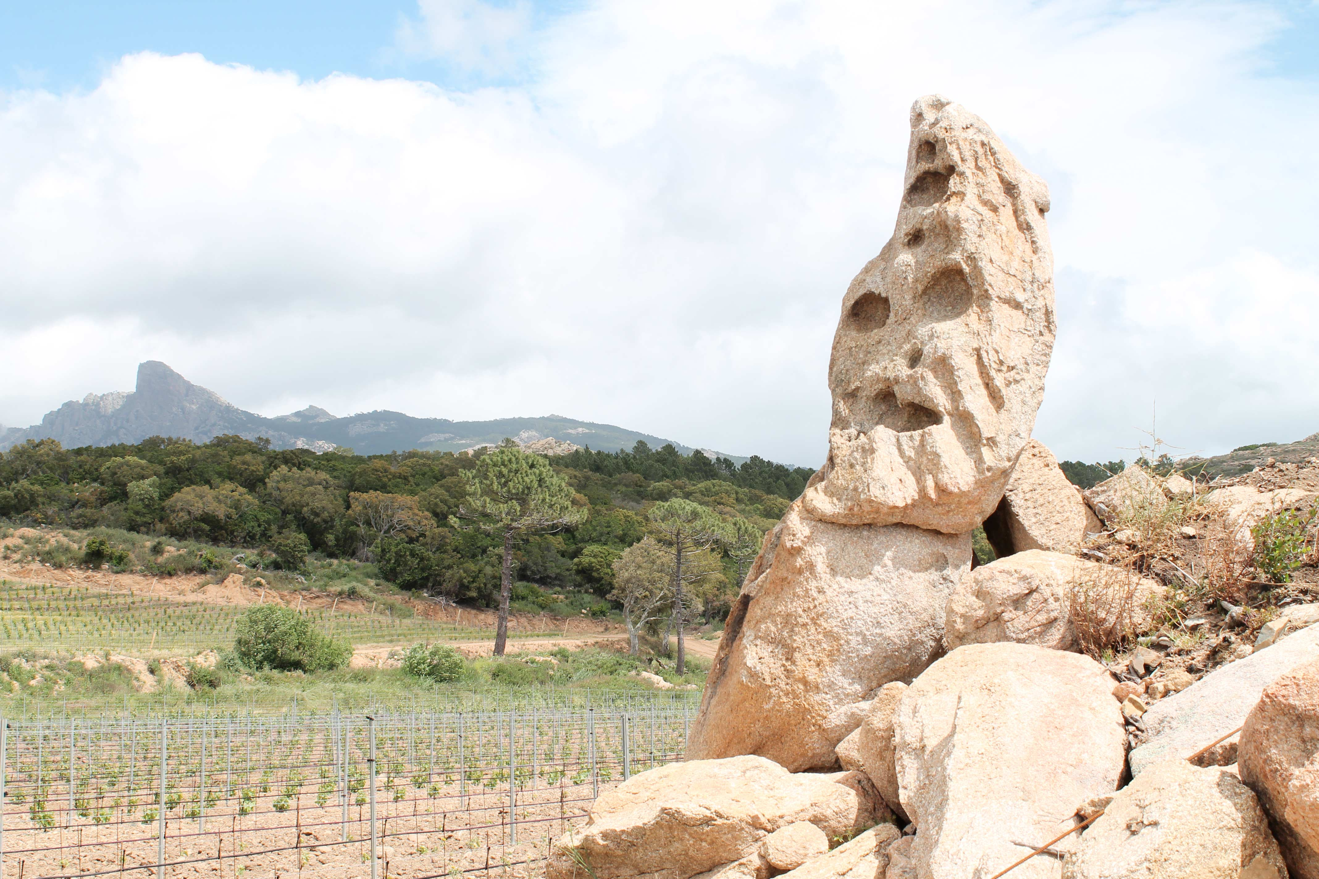 Corsica wine tour, strange outcrop near vineyard