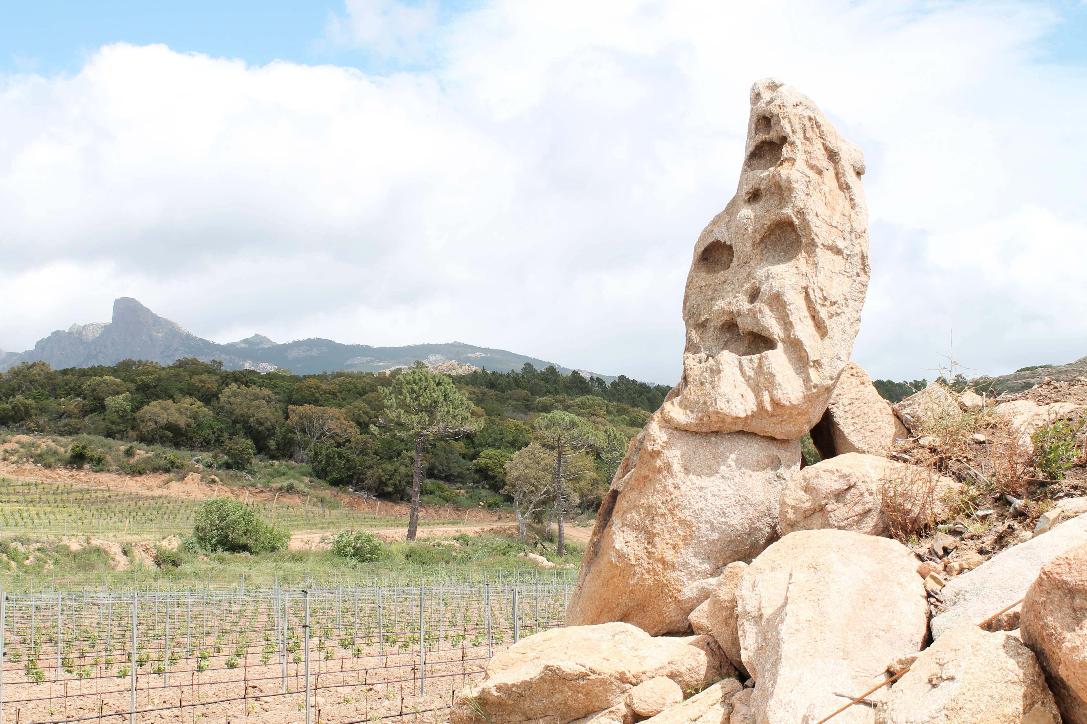 Corsica wine tour, strange outcrop near vineyard