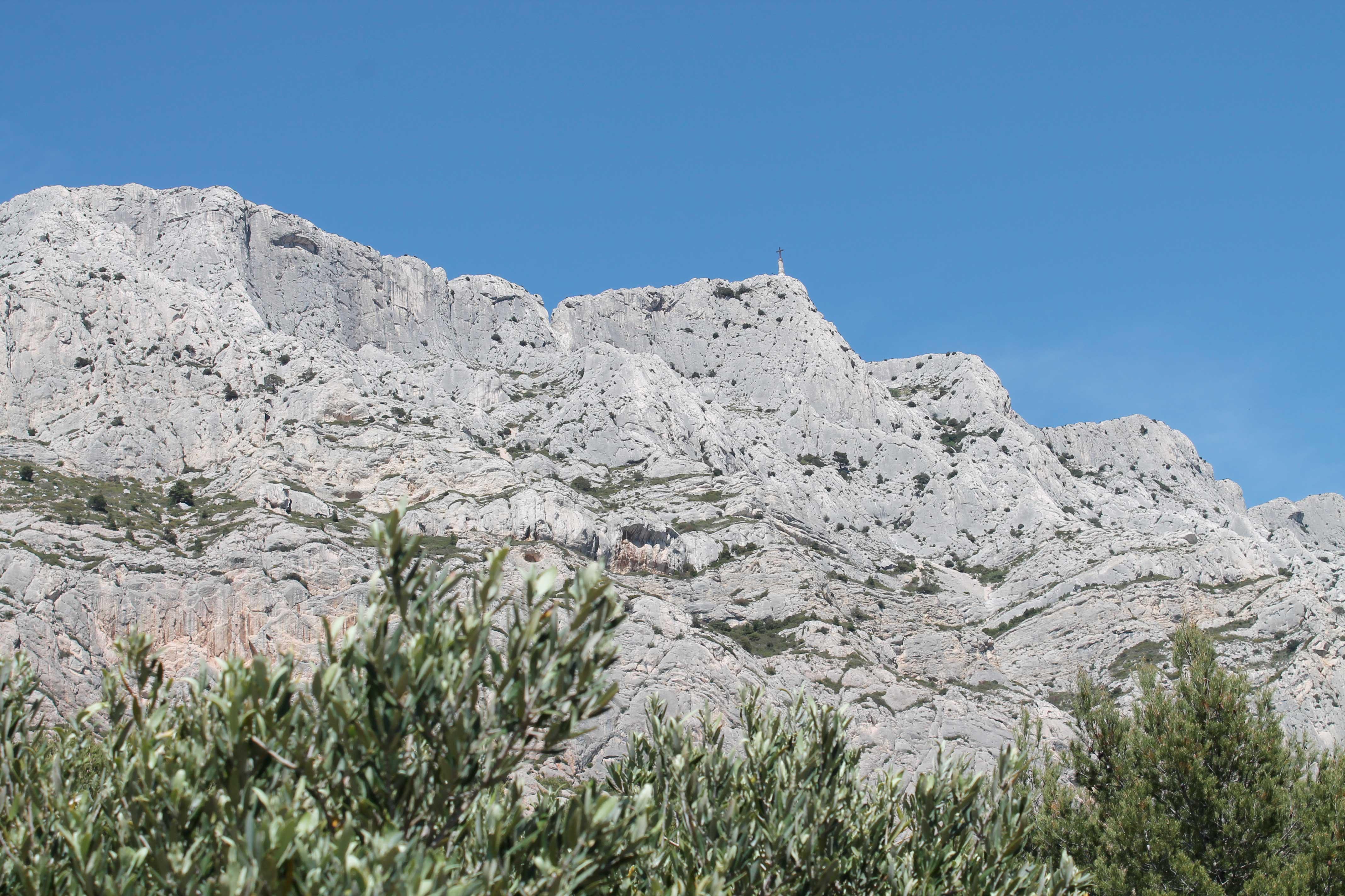 Wine & Mountain excursion, olive trees, Mount Sainte Victoire
