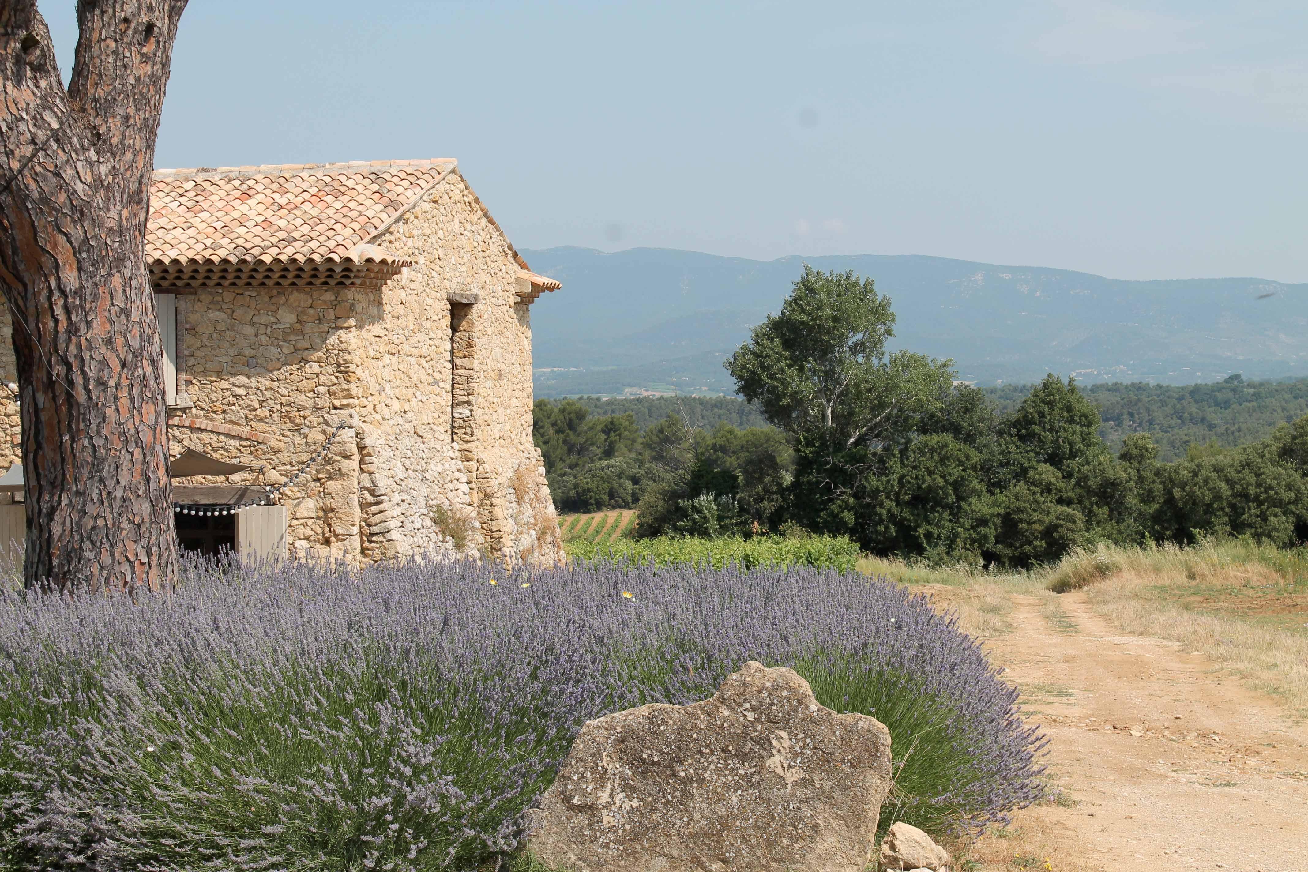 Aix en Provence wine tour, stone house with lavender
