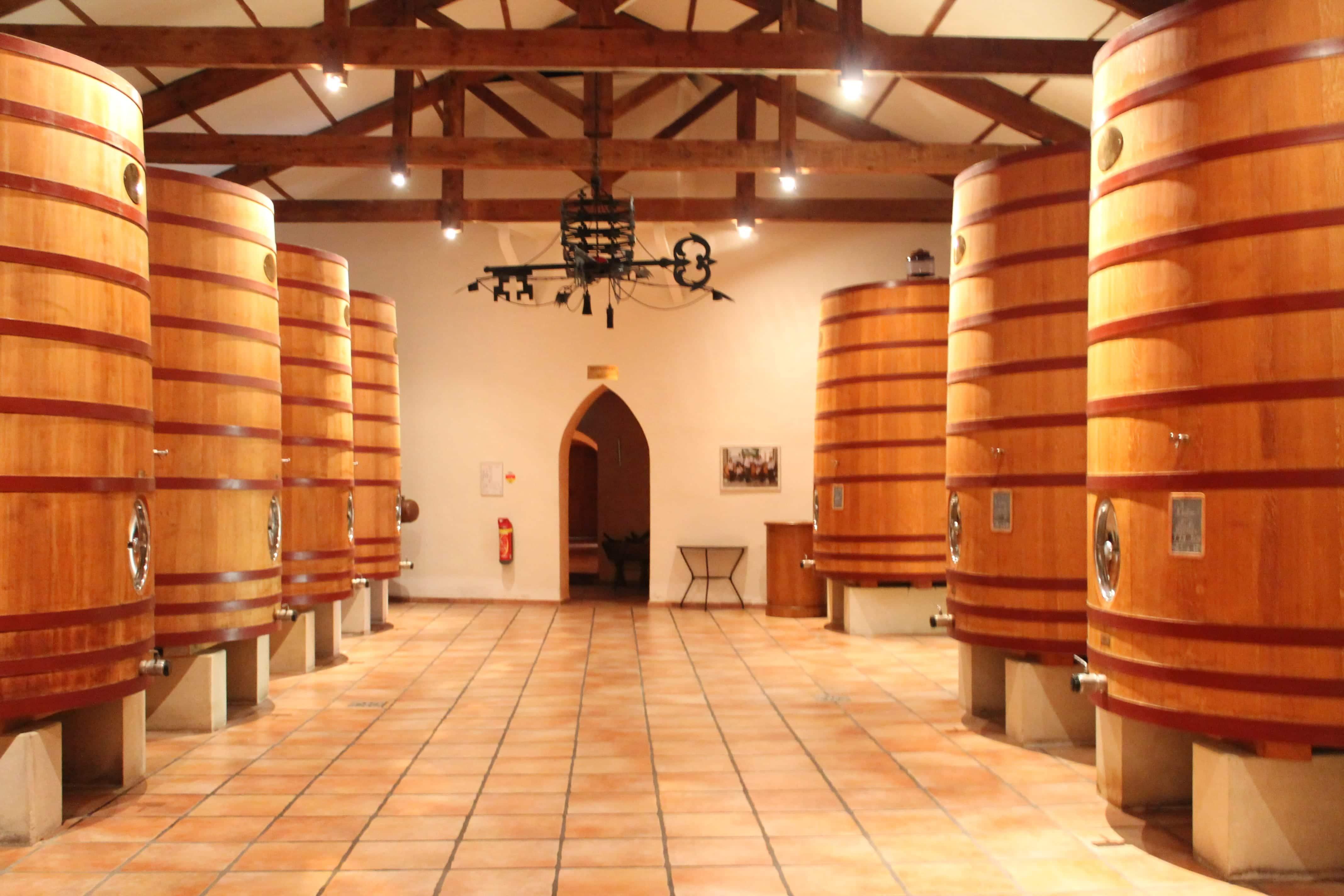 Châteauneuf du Pape wine tour, new oak barrels