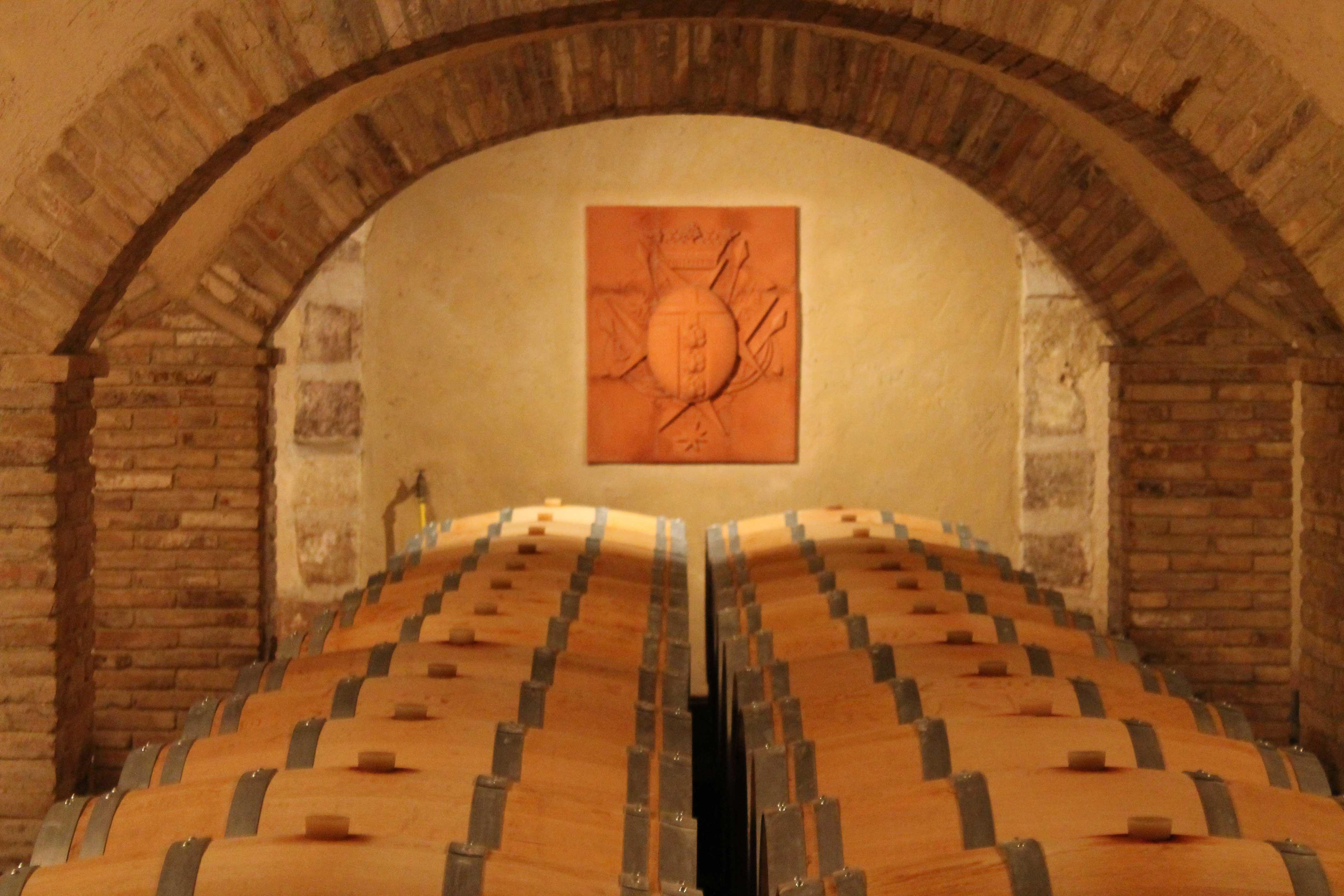 Châteauneuf du Pape wine tour, cellar
