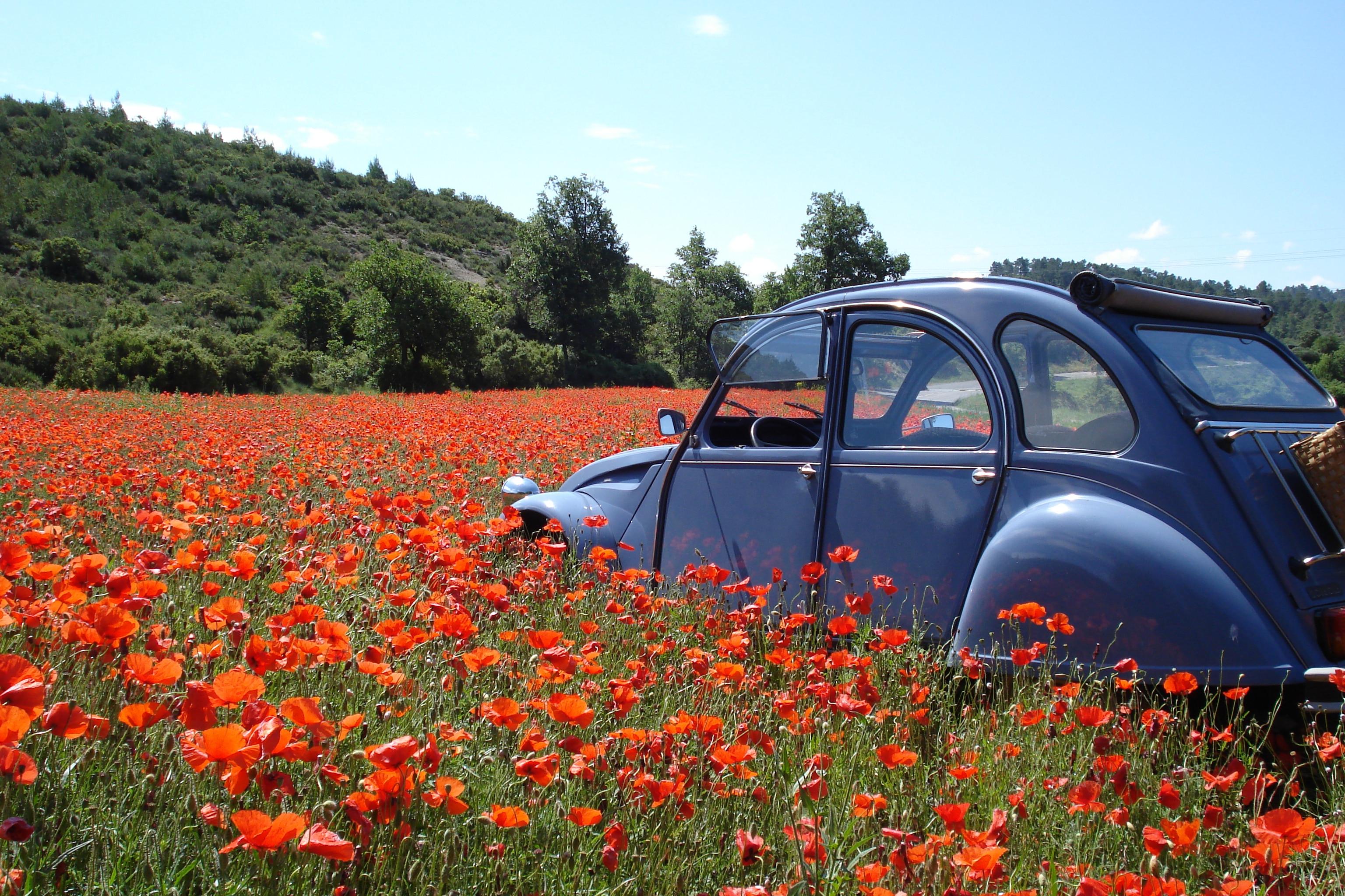 A la carte wine tour, 2 CV in poppy field