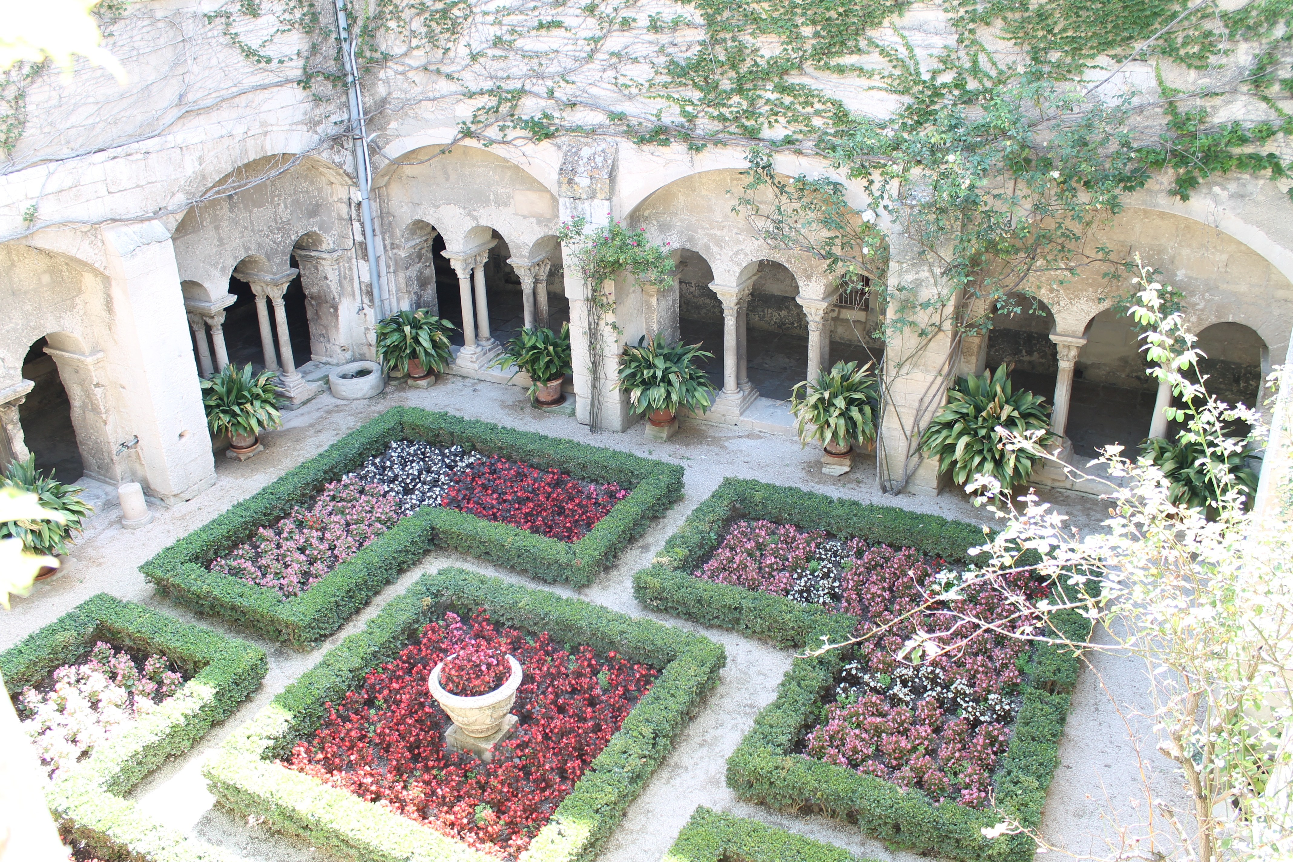 Provence wine tour, courtyard of th hospital of Arles