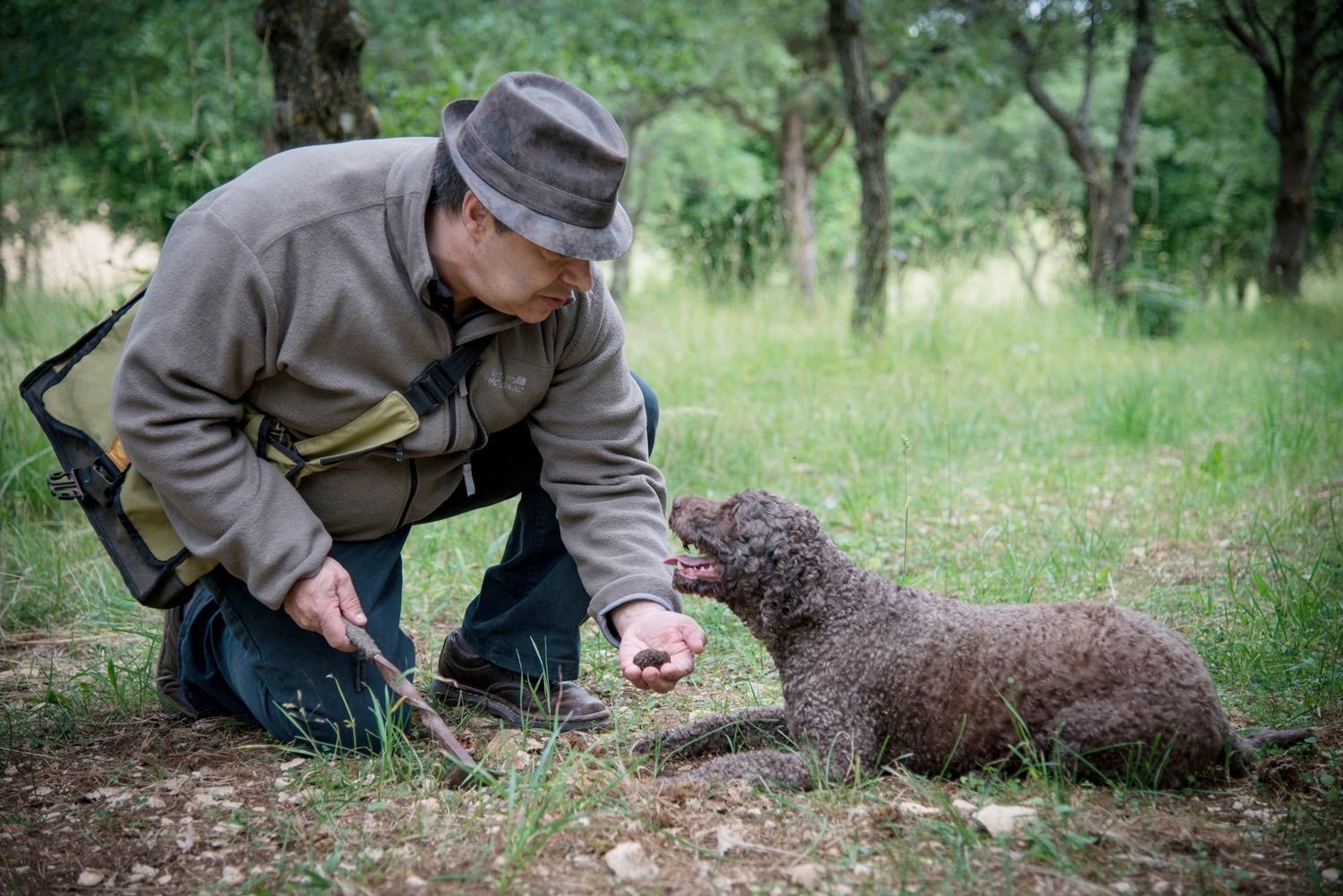 Wine and truffle tour, truffle hunter training his dog