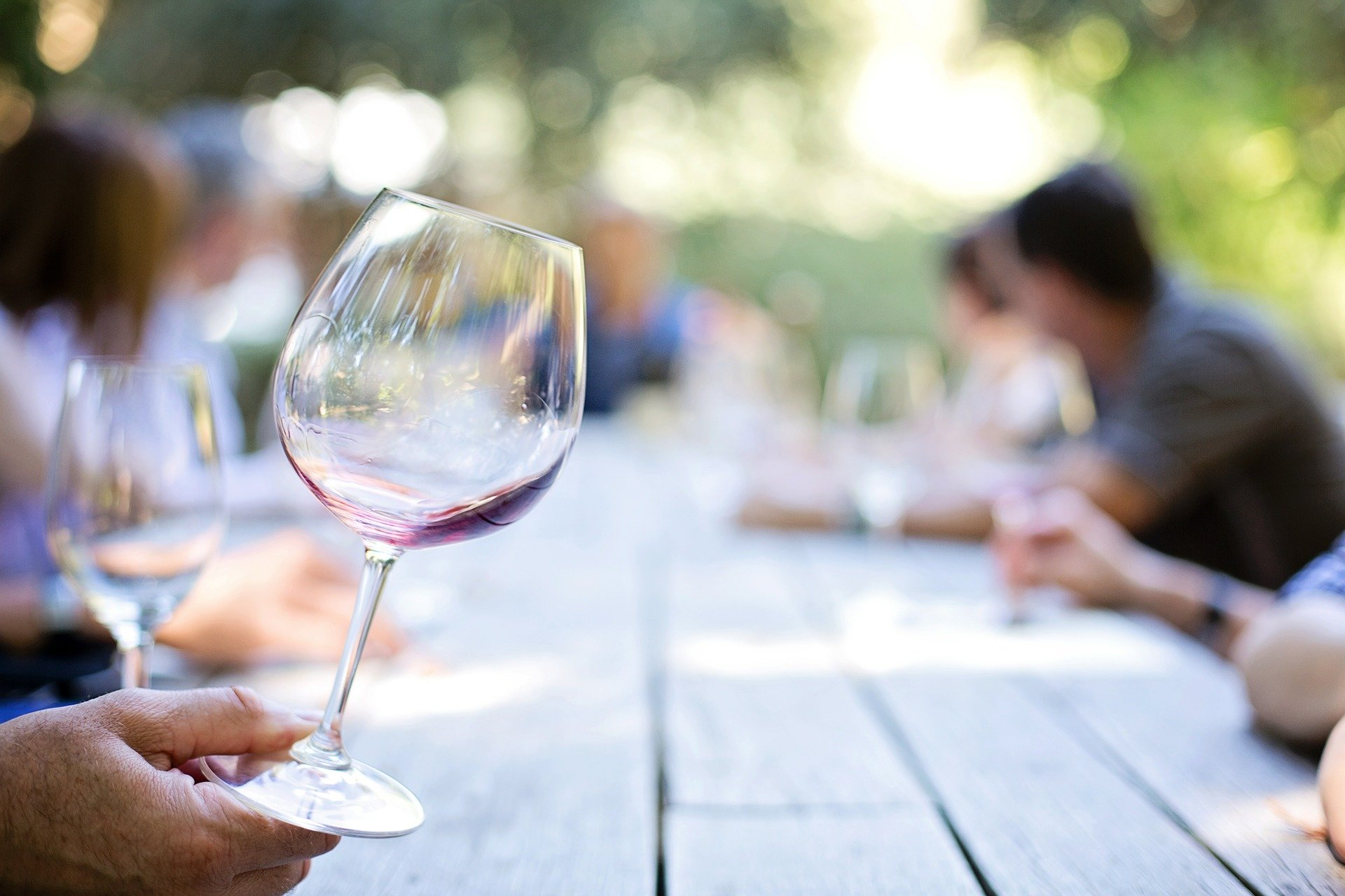 Discover the art of wine tasting