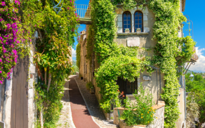 A wine tour with Planet Provence: taking you on a journey through French culture.